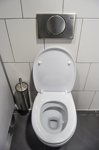 eliminar el sarro del inodoro